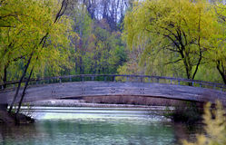 Schönes riverscape Lizenzfreies Stockbild