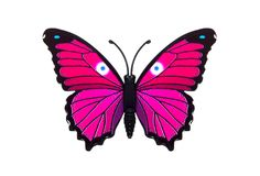 Schönes Rosa farbiger Schmetterling Lizenzfreie Stockfotos