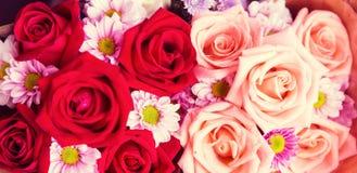 Schönes rosafarbenes Muster, Valentinsgrüße oder Hochzeit oder Liebeshintergrund Lizenzfreies Stockbild