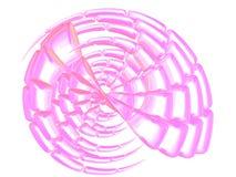 Schönes rosafarbenes Shell auf Weiß Stockbilder