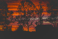 Schönes rotes Sonnenunterganghaus und das Baumschattenbild Stockbild