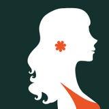 Schönes Schattenbild der eleganten Frau Lizenzfreies Stockfoto