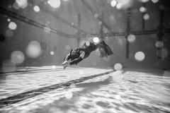 Schönes Schwarzweiss-Bild von Freediver tuend dynamisch mit stockfoto