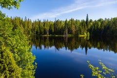 Schönes SeeNaturreservat auf der Insel von Valaam stockfotografie