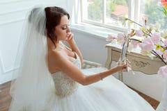 Schönes sexy Mädchen in einem luxuriösen Kleid Stockbilder