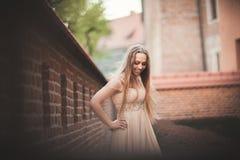 Schönes sexy Mädchen mit langer perfekter Form des Haares und des Kleides bräunte den Körper, der nahe Wand possing ist Stockbild