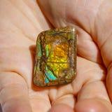 Schönes Stück von Ammolite in den Händen Lizenzfreies Stockfoto