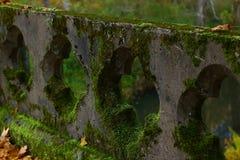 Schönes starkes Moos auf der alten Brücke Überwuchertes Geländer lizenzfreies stockbild