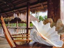 Schönes Strandurlaubsort mit Palmen Philippinen stockbilder
