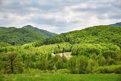 Schönes Tal mit Bergen im Hintergrund Lizenzfreies Stockfoto