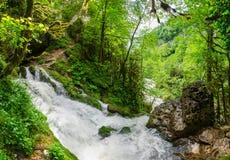 Schönes Tapetenmilchwasserfall-Flussreißender fluss Felsiger Gebirgsfluss Kaukasus in Wald-Isichenko-Wasserfall, Guamka, Mezmay Lizenzfreie Stockfotografie