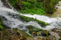 Schönes Tapetenmilchwasserfall-Flussreißender fluss Felsiger Gebirgsfluss Kaukasus in Wald-Isichenko-Wasserfall, Guamka, Mezmay Stockfoto