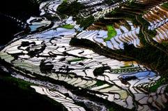 Schönes terassenförmig angelegtes Reisfeld in MU Cang Chai, Vietnam lizenzfreie stockfotografie