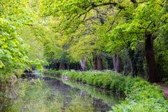 Schönes walkpath an Bansigstoke-Kanal in Woking, Surrey stockfotografie