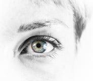 Schönes weibliches Auge stockfoto