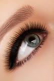 Schönes weibliches Auge mit den extremen langen Wimpern, schwarzes Zwischenlagenmake-up Perfektes Make-up, lange Peitschen Nahauf Lizenzfreie Stockfotografie