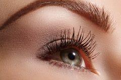 Schönes weibliches Auge mit den extremen langen Wimpern, schwarzes Zwischenlagenmake-up Perfektes Make-up, lange Peitschen Nahauf Lizenzfreie Stockfotos