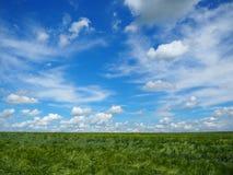 Schönes Wetter an den Feldern stockfotos