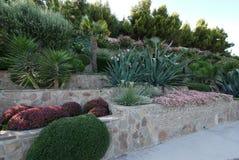 Schönes Yukki, Palmen, Blumen und andere Sträuche werden harmonisch im Landschaftsdesign des Parks kombiniert stockfotos