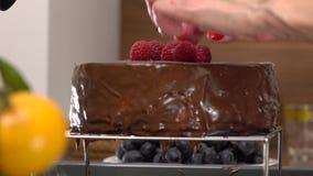 Schönheit übergibt die Platzierung von Himbeeren auf frisch gekochtem Schokoladenkuchen 4K schließen herauf Video stock video
