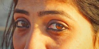 Schönheit in den Augen lizenzfreie stockbilder