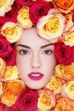 Schönheit in den Rosen lizenzfreie stockfotos