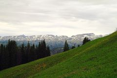 Schönheit der beartooth Berge lizenzfreie stockfotos