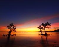 Schönheit in der Natur Lizenzfreie Stockfotos