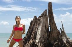 Schönheit in der Sonnenbrille und im roten Bikini auf Strand Art und Weiseblick Reizvolle Dame Lizenzfreie Stockfotos