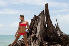 Schönheit in der Sonnenbrille und im roten Bikini auf Strand Art und Weiseblick Reizvolle Dame Lizenzfreie Stockbilder