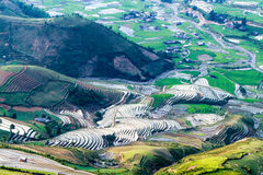 Schönheit der terassenförmig angelegten Felder des Reises in füllender Jahreszeit des Wassers Lizenzfreies Stockbild