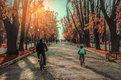 Schönheit des Herbstes Lizenzfreies Stockbild