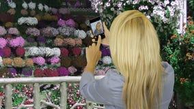 Schönheit, die selfie Foto am Handy im Blumengarten macht stock video footage