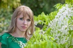 Schönheit in einem Garten Stockfotos