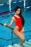 Schönheit in einem roten Badeanzug im Swimmingpool Stockbilder