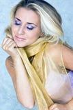 Schönheit im silk Schal Stockbilder