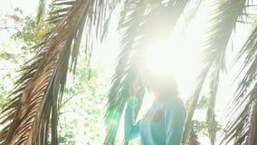 Schönheit ist in der Straße unter den Palmen, welche die Dame den Baum betrachtet stock video