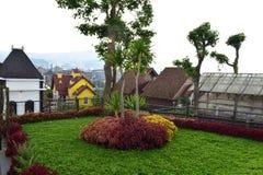Schönheit lanscape und panoramisches grünes Gras stockfoto