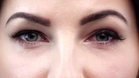 Schönheit mit dem perfekten natürlichen Make-upblinken stock video