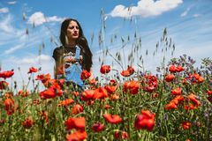 Schönheit mit Mohnblumen lizenzfreies stockbild
