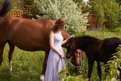 Schönheit mit Pferden Stockbilder