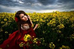 Schönheit mit rotem Mantel auf dem gelben blühenden Gebiet stockfoto