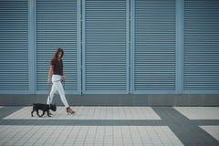 Schönheit mit schwarzem Welpen der französischen Bulldogge an der Straße stockfotos