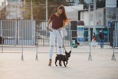 Schönheit mit schwarzem Welpen der französischen Bulldogge an der Straße stockbild