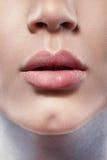 schönheit Schönheits-Gesicht mit rotem Lippenstift auf prallen vollen sexy Lippen Nahaufnahme von Mädchen ` s Mund mit Berufslipp stockfotografie