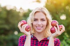 Schönheit, welche die Äpfel, sie essend erntet Stockfotos