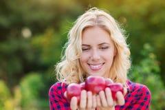 Schönheit, welche die Äpfel, sie essend erntet Stockfotografie