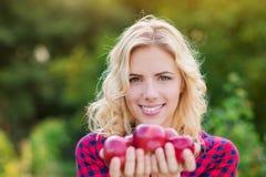 Schönheit, welche die Äpfel, sie essend erntet Lizenzfreie Stockbilder