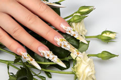 Schönheits-Blumenmusternägel stockfotografie