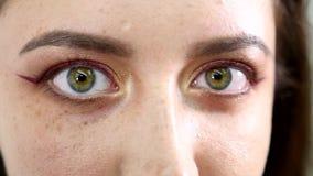 Schönheits-Frauen-Augen-Make-upnahaufnahme Schöner Feiertag machen Brown-Augen wieder gut Falsche Wimpern, Nachtpartei stock video